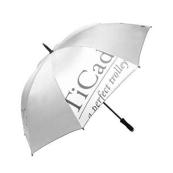 TiCad Standard Golf-Schirm   silber mit Stift